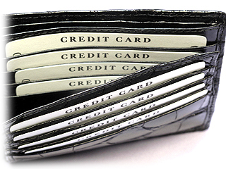 クロコダイル二つ折財布・Wカード札入(黒)